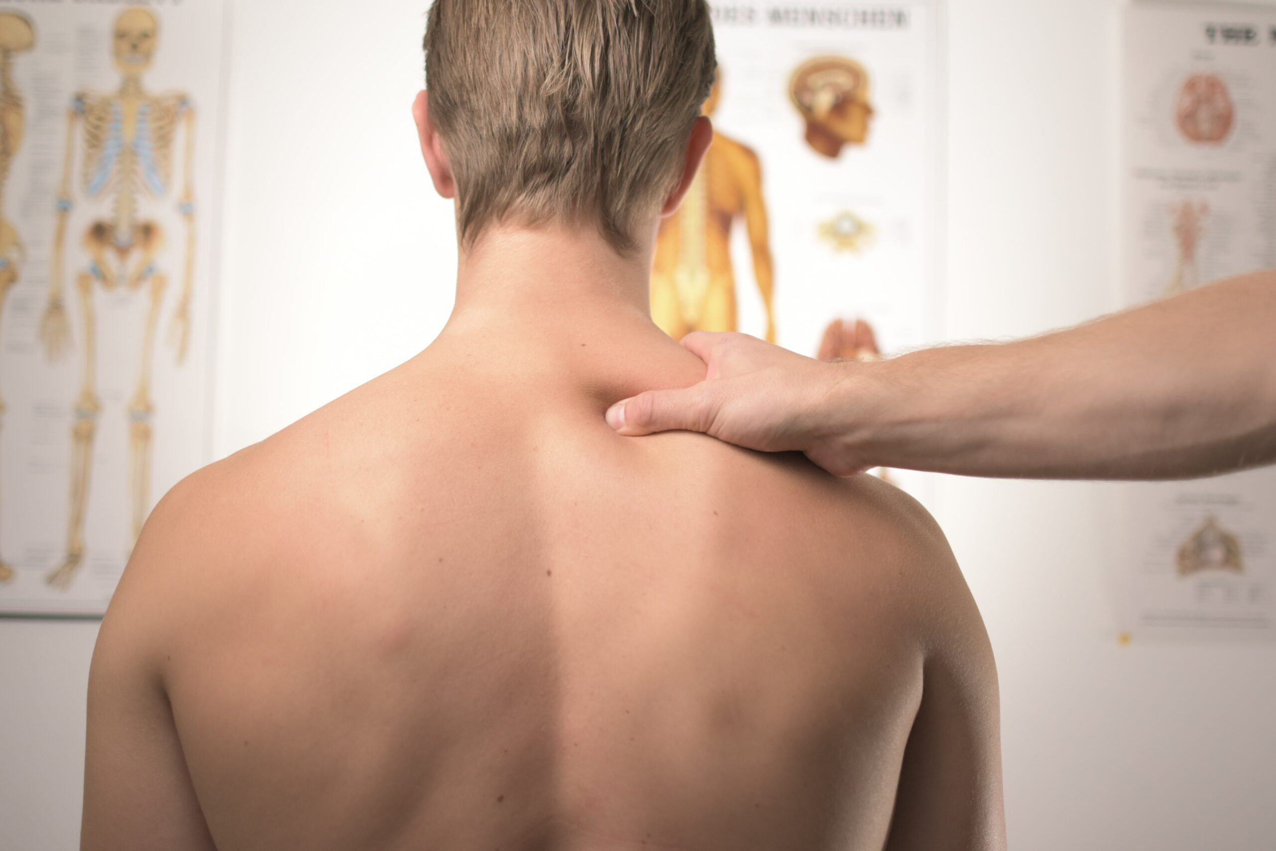 working days are lost due to musculoskeletal disorders